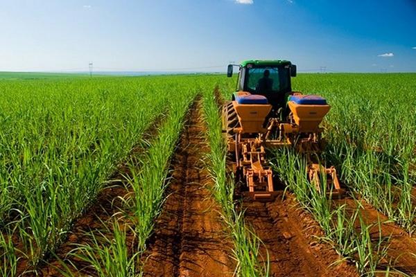 Cadena agroproductiva venezolana: deprimida, pero con potencial de recuperación