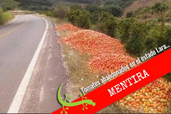 Pérdida de fresas y tomates por falta de gasolina durante la cuarentena