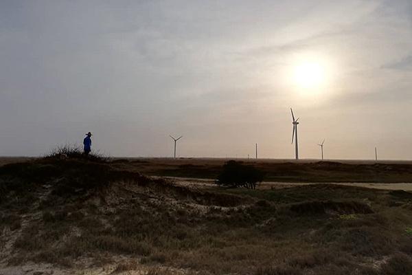 Parque Eólico de la Guajira: Una promesa saqueada por el abandono gubernamental