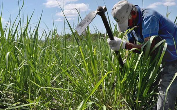 #CotejoVerifica ¿Podrá Castro Soteldo cumplir su meta de producción de caña de azúcar para 2019?